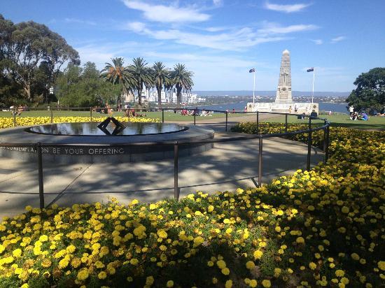Kings Park e Jardim Botânico, Perth Foto: reprodução