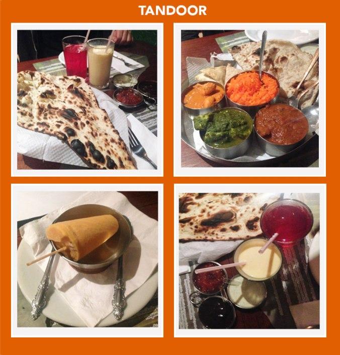 pratos-tandoor-restaurante-indiano-japa-viajante