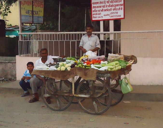 feira-india-jaipur-japa-viajante-fernanda-toyomoto