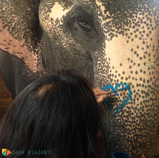 elephant-village-japa-viajante-fernanda-toyomoto-india