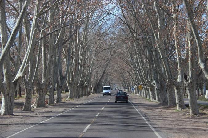 san-rafel-estrada-argentina